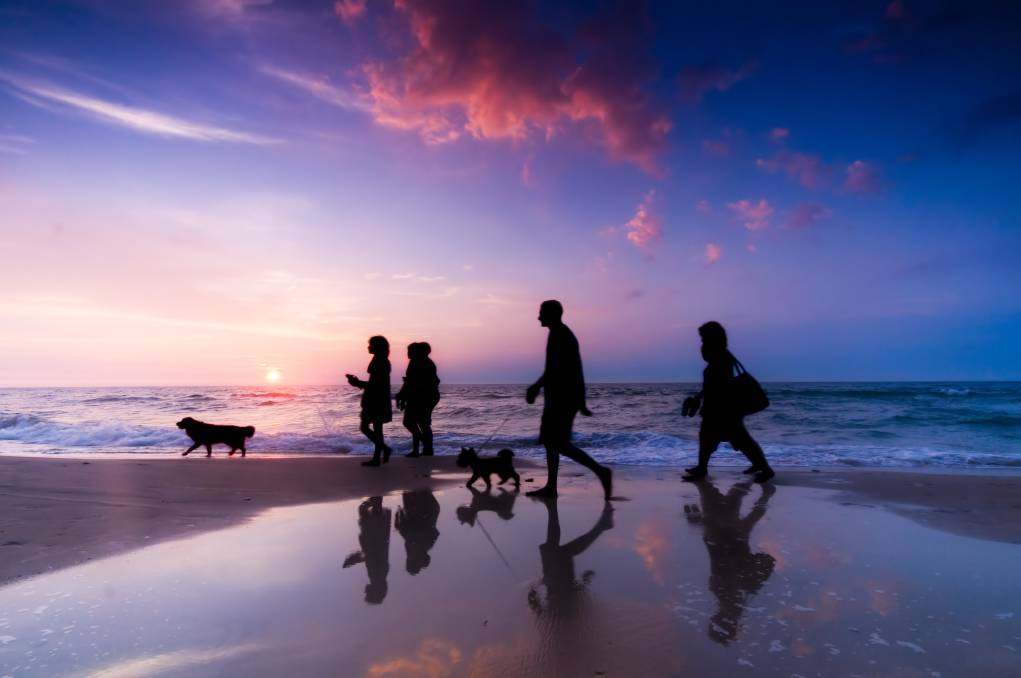 FAMILY-FRIENDLY: More and more families are choosing to travel with their furry friends, so it's important to make sure it's a happy holiday for everyone.