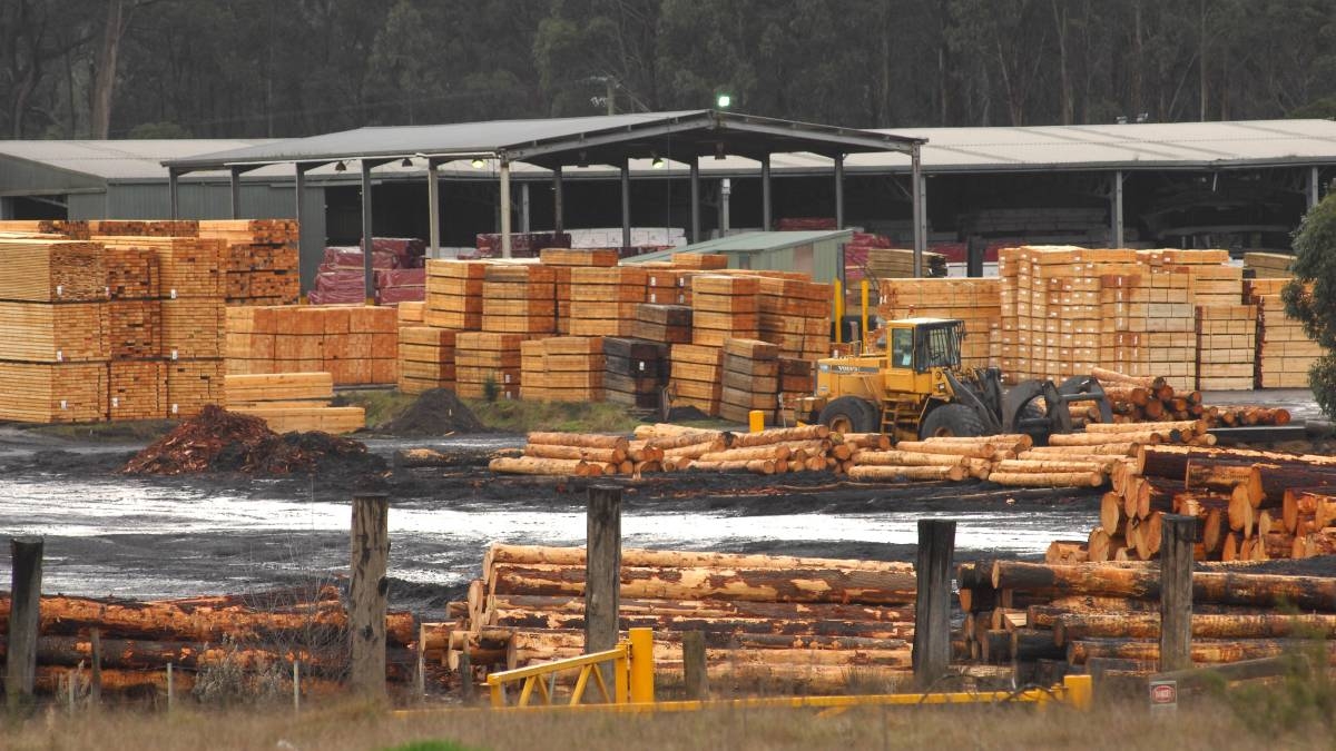 Timberlink at Bell Bay seeks federal funding to strengthen future