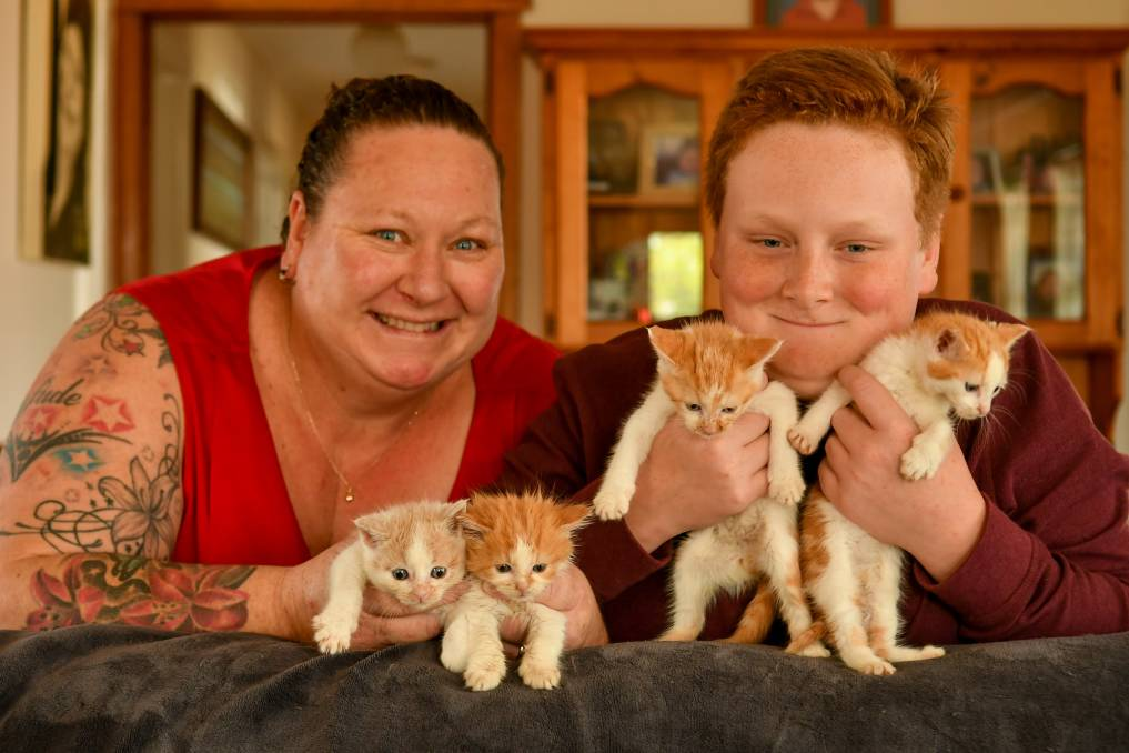 PAWFECT FRIENDS: Cressy's Katie and Jade Hicks, 12, with four six-week-old kittens the family is foster caring. Picture: Scott Gelston