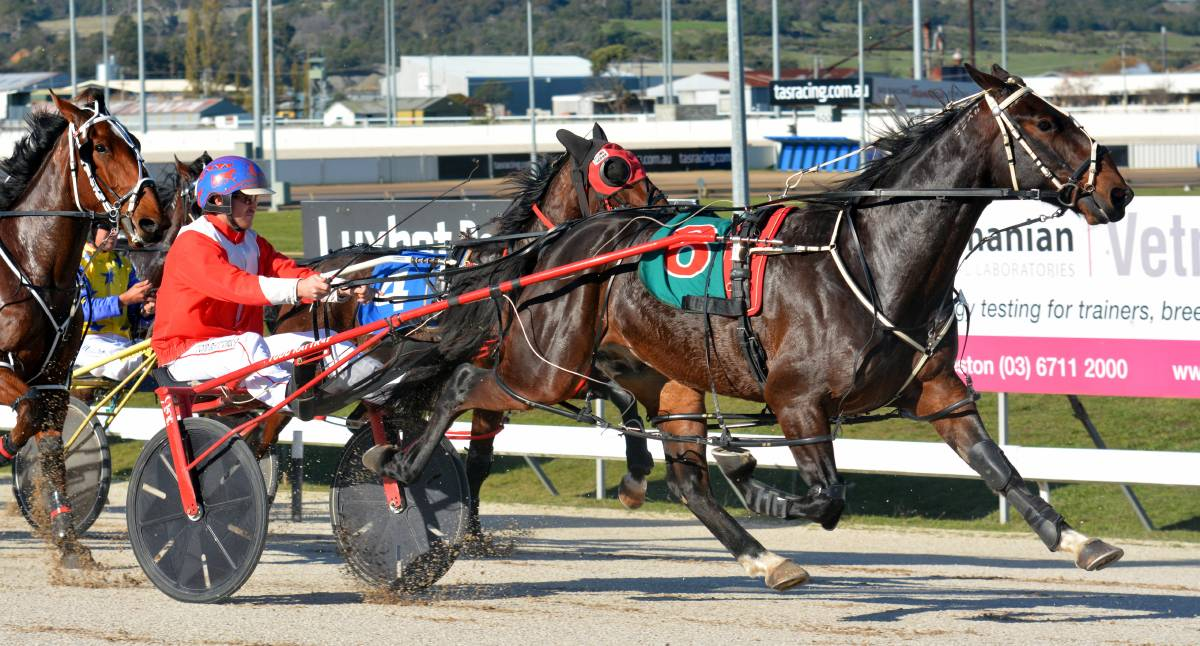 CUP HOPE: Izaha wins at Mowbray with Todd Rattray in the sulky. On Sunday night, he returns to Devonport, a track where he has won four of his six starts, for the $30,000 Cup.