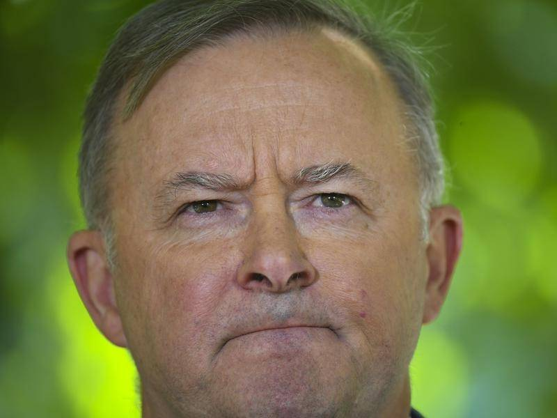 A construction union official is calling for Labor to dump Anthony Albanese as leader.